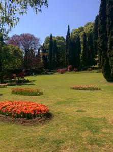 Parco Sigurtà - Arianna Torelli
